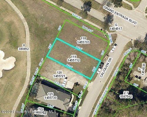 0 Caliquen Drive, Brooksville, FL 34604 (MLS #2210338) :: Premier Home Experts