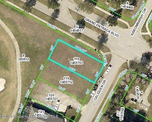 0 Caliquen Drive, Brooksville, FL 34604 (MLS #2210339) :: Premier Home Experts
