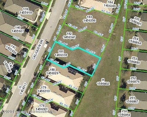 0 Caliquen Drive, Brooksville, FL 34604 (MLS #2210340) :: Premier Home Experts