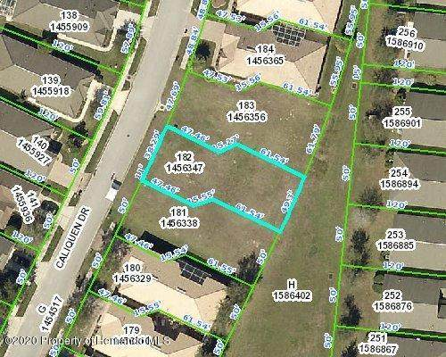 0 Caliquen Drive, Brooksville, FL 34604 (MLS #2210341) :: Premier Home Experts
