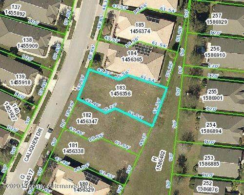 0 Caliquen Drive, Brooksville, FL 34604 (MLS #2210342) :: Premier Home Experts