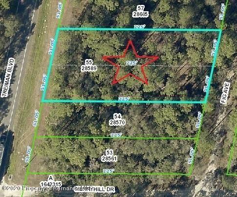 0 Treiman Avenue, Ridge Manor, FL 33597 (MLS #2210654) :: Premier Home Experts