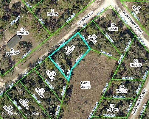 0 Octavia Lane, Webster, FL 33597 (MLS #2210783) :: Premier Home Experts