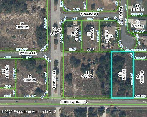 000 County Line Road, Spring Hill, FL 34609 (MLS #2211020) :: Premier Home Experts