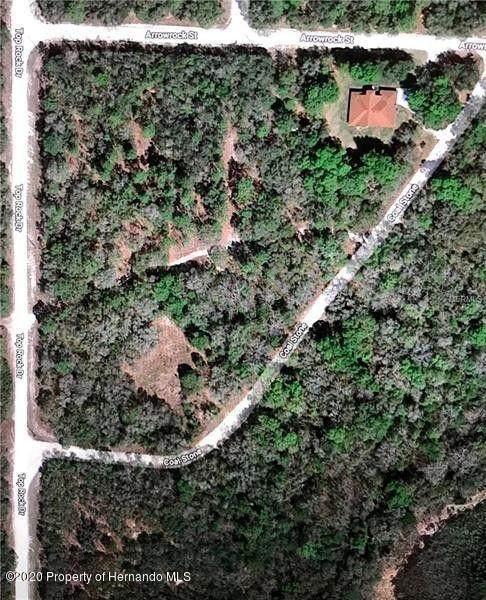 0000 Coalstone Drive, Webster, FL 33597 (MLS #2211235) :: Premier Home Experts