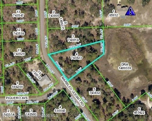 0 Marbled Godwit Road, Weeki Wachee, FL 34614 (MLS #2211456) :: Premier Home Experts