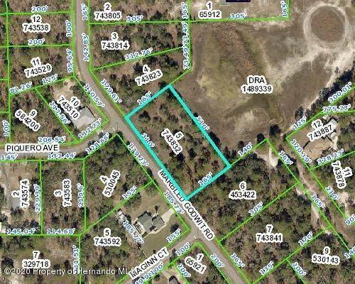 0 Marbled Godwit Road, Weeki Wachee, FL 34614 (MLS #2211458) :: Premier Home Experts