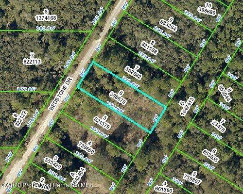 0 Bedstone Drive, Webster, FL 33597 (MLS #2211941) :: Premier Home Experts