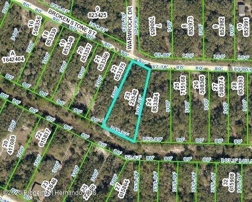 0 Brokenstone Street, Ridge Manor, FL 33597 (MLS #2211942) :: Premier Home Experts