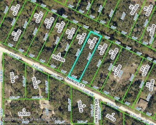 Lot 17 Manuel Street, Webster, FL 33597 (MLS #2212052) :: Premier Home Experts