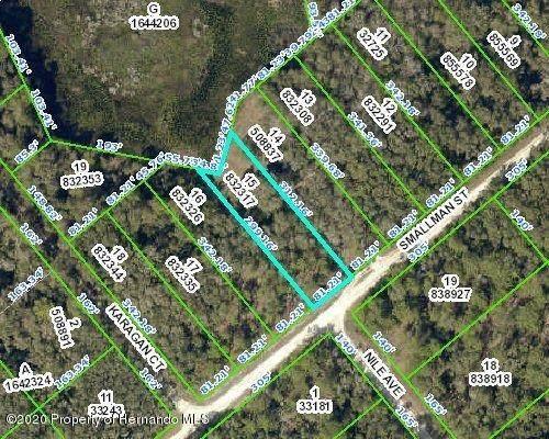 00 Smallman Street, Webster, FL 33597 (MLS #2212191) :: Premier Home Experts