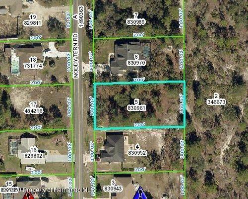 10532 Noddy Tern Road, Brooksville, FL 34613 (MLS #2212266) :: Premier Home Experts