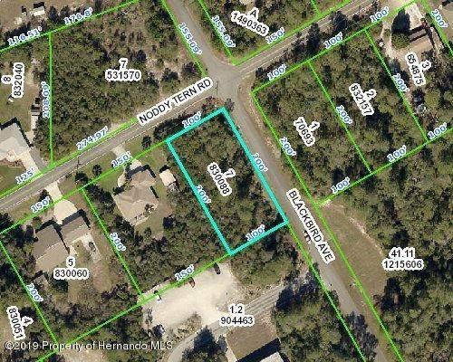 0 Noddy Tern Road, Brooksville, FL 34613 (MLS #2212288) :: Premier Home Experts