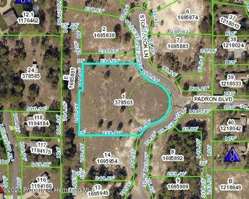0 Padron Boulevard, Spring Hill, FL 34609 (MLS #2212779) :: Premier Home Experts