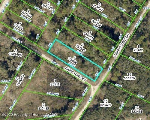 0 Chipstone Street, Webster, FL 33597 (MLS #2212893) :: Premier Home Experts
