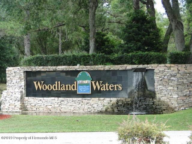 0 Tooke Shore Drive, Weeki Wachee, FL 34613 (MLS #2212994) :: Premier Home Experts