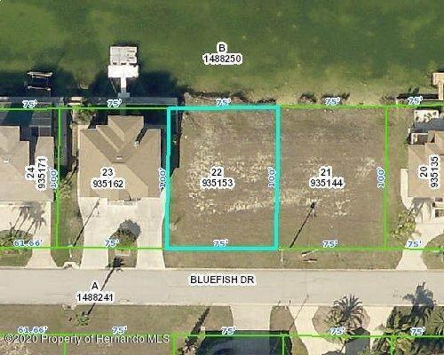 3423 Bluefish Drive, Hernando Beach, FL 34607 (MLS #2213060) :: Premier Home Experts