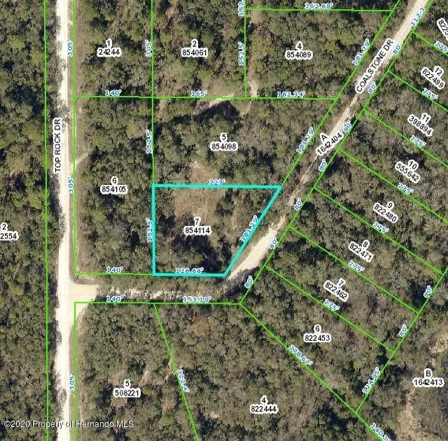 0 Coalstone, Webster, FL 33597 (MLS #2213062) :: Premier Home Experts