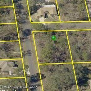 0 Kitty Road, Brooksville, FL 34614 (MLS #2213481) :: Premier Home Experts