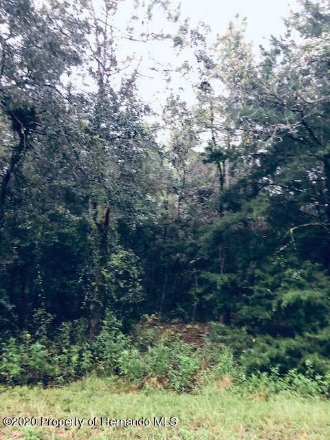 0 Everglades Kite Road, Weeki Wachee, FL 34614 (MLS #2213549) :: Premier Home Experts