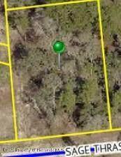 . Sage Thrasher Avenue, Weeki Wachee, FL 34614 (MLS #2213698) :: Premier Home Experts