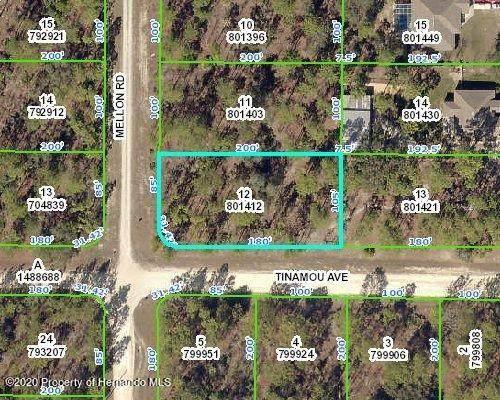 0 Mellon Road, Weeki Wachee, FL 34614 (MLS #2213715) :: Premier Home Experts