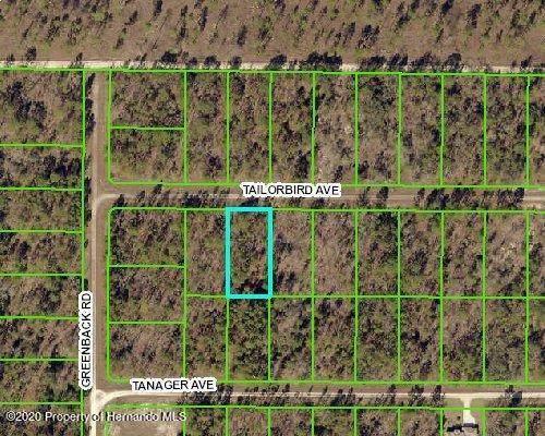 13044 Tailorbird Avenue, Weeki Wachee, FL 34614 (MLS #2213804) :: Premier Home Experts