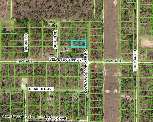 13665 Downy Woodpecker Road, Weeki Wachee, FL 34614 (MLS #2213806) :: Premier Home Experts
