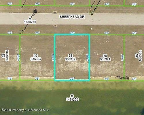 3424 Sheephead Drive, Hernando Beach, FL 34607 (MLS #2213858) :: Premier Home Experts