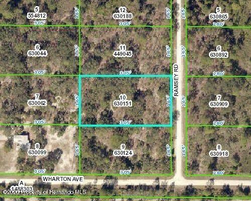 18027 Ramsey Road, Weeki Wachee, FL 34614 (MLS #2213868) :: Premier Home Experts