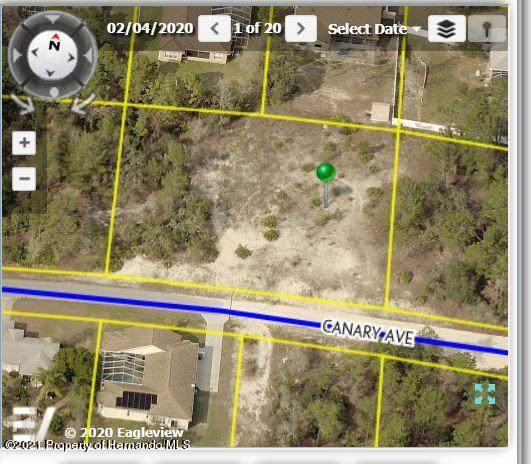 10475 Canary Avenue, Spring Hill, FL 34613 (MLS #2213962) :: Premier Home Experts