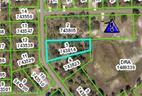 000 Marbled Godwit Road, Weeki Wachee, FL 34614 (MLS #2214038) :: Premier Home Experts