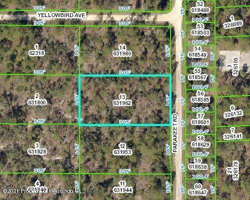 000 Parakeet Road, Weeki Wachee, FL 34614 (MLS #2214091) :: Premier Home Experts