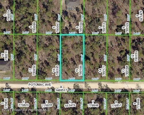 000 Potomac Avenue, Weeki Wachee, FL 34614 (MLS #2214140) :: Premier Home Experts
