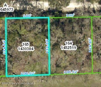 0 Fitzhugh Avenue, Brooksville, FL 34601 (MLS #2214178) :: Premier Home Experts