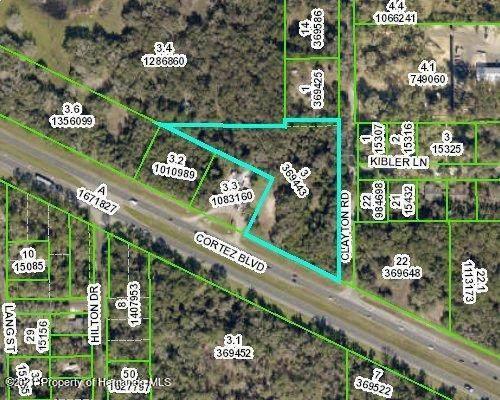 0 Cortez Boulevard, Brooksville, FL 34601 (MLS #2214450) :: Premier Home Experts