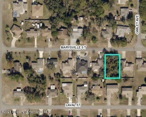 00 Marysville Street, Spring Hill, FL 34608 (MLS #2214618) :: Premier Home Experts