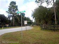 10580 N Northcut Avenue, Crystal River, FL 34428 (MLS #2215858) :: Premier Home Experts