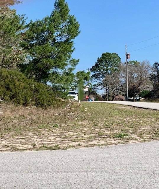0 Elgin Boulevard, Spring Hill, FL 34608 (MLS #2216047) :: Premier Home Experts