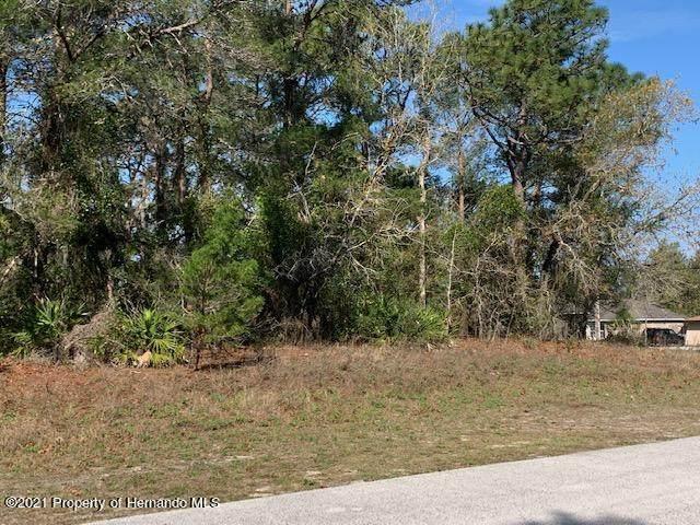 0 Freeport Drive, Spring Hill, FL 34608 (MLS #2216048) :: Premier Home Experts