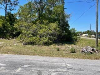 7658 Cortez Boulevard, Weeki Wachee, FL 34607 (MLS #2216149) :: Premier Home Experts