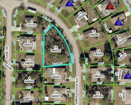 0 Ambassador Avenue, Spring Hill, FL 34609 (MLS #2216234) :: Premier Home Experts