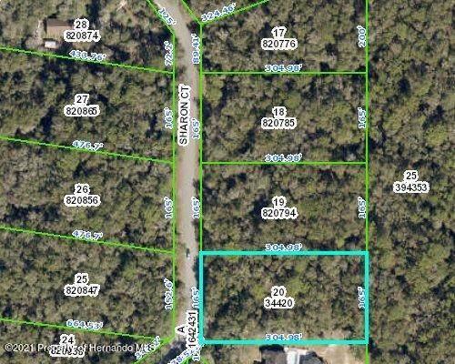 00 Sharon Court Lot 20, Webster, FL 33597 (MLS #2216478) :: Premier Home Experts