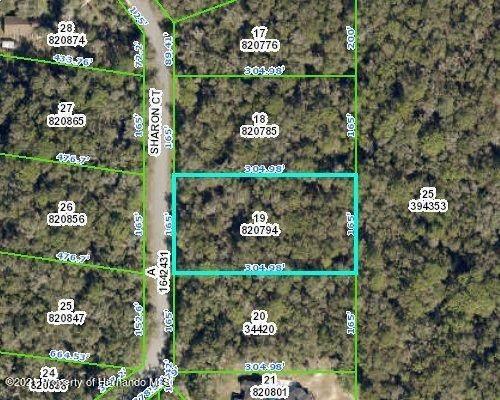 00 Sharon Court Lot 19, Webster, FL 33597 (MLS #2216479) :: Premier Home Experts