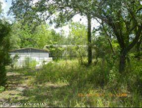 5345 W Winter Sun Lane, Homosassa, FL 34446 (MLS #2216568) :: Premier Home Experts