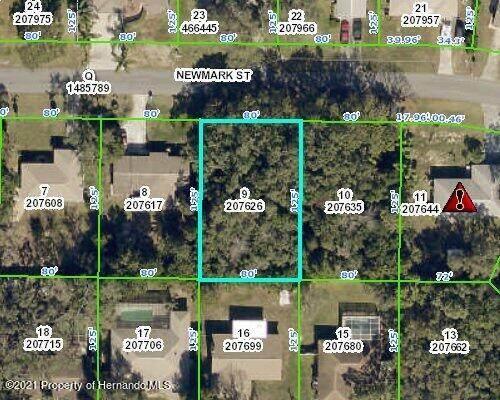 00 Newmark Street, Spring Hill, FL 34606 (MLS #2218552) :: Premier Home Experts
