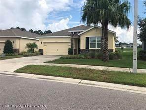 13559 Paddington Way, Spring Hill, FL 34609 (MLS #2218555) :: Premier Home Experts