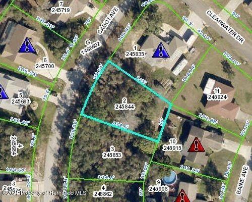 124 Cabot Avenue, Spring Hill, FL 34606 (MLS #2218606) :: Dalton Wade Real Estate Group