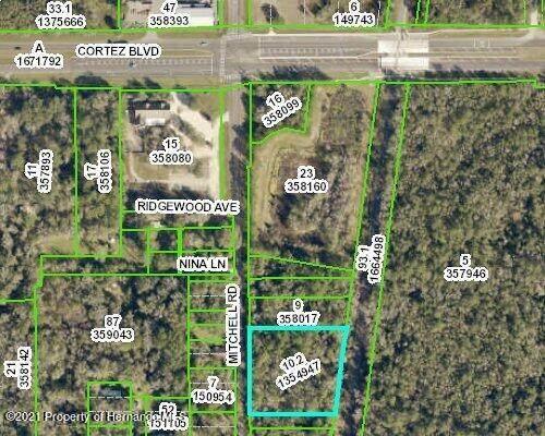 0 Mitchell Road, Brooksville, FL 34601 (MLS #2220324) :: Dalton Wade Real Estate Group