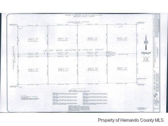 B E & F Dark Star Trail, Brooksville, FL 34601 (MLS #2095904) :: The Hardy Team - RE/MAX Marketing Specialists